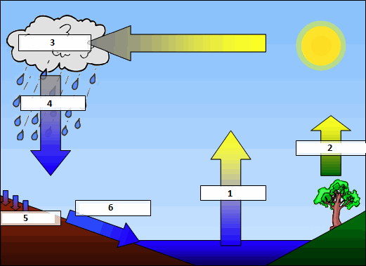 The Water Cycle Thinglink